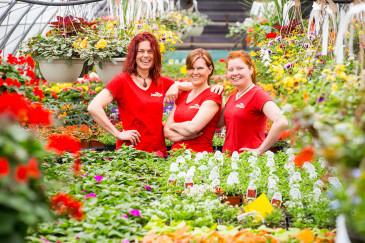 Centre de jardin p pini re jardin pro sherbrooke for Conseil jardinage