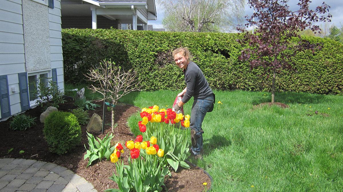 Entretien paysager jardin pro route 222 for Service entretien jardin