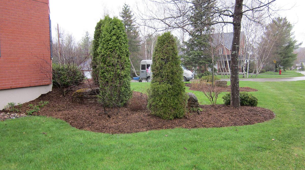 Entretien paysager jardin pro route 222 for Jardin paysager sans entretien