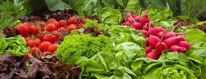 vegetables 905382 1