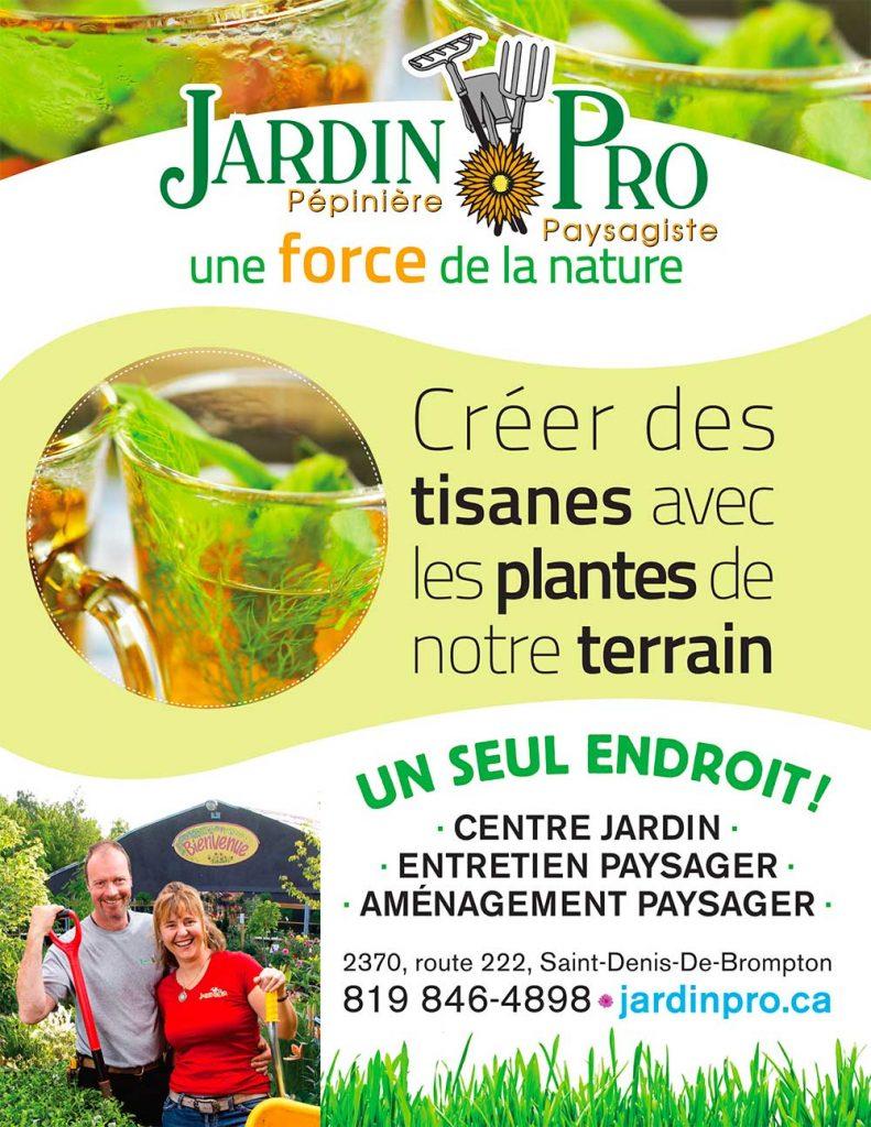 Publicité St Denisien Novembre17