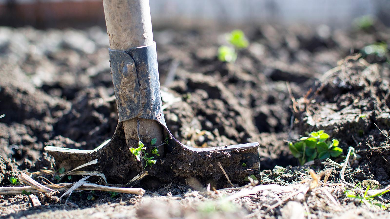 pelle analysesol services jardin pro