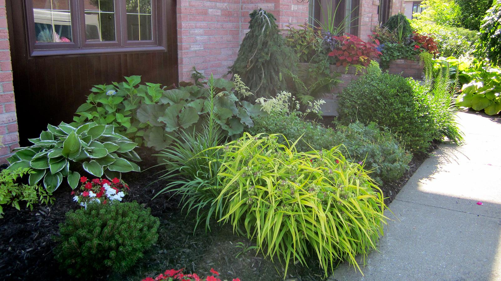 service entretien ete floraison2 jardin pro 1