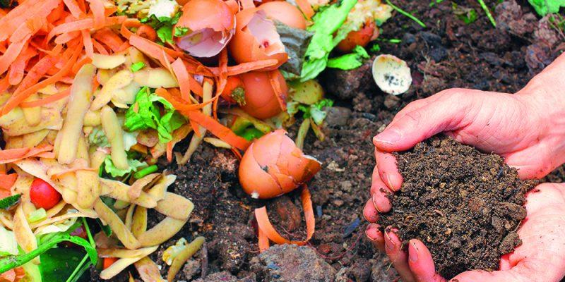 compost au jardin